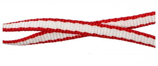 Sling Ring Dyneema 60cm